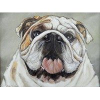 George the Bulldog